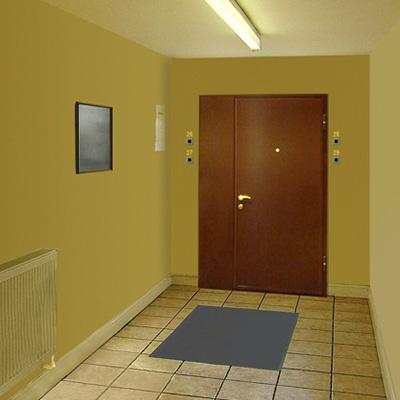 входные двери в тамбур подъезда квартиры